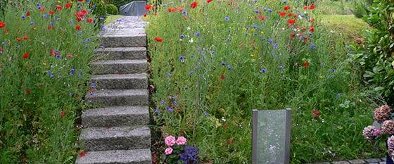 Garten von Adolf Gärtner mit Treppe in der Mitte