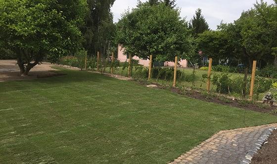 Grüne Wiese für einen neuen Garten von Adolf Gärtner